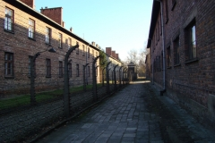 Auschwitz–Birkenau.10