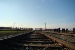 Auschwitz–Birkenau.12
