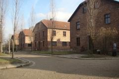 Auschwitz–Birkenau.4