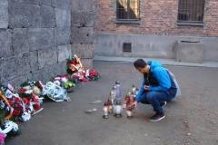 Auschwitz–Birkenau.9