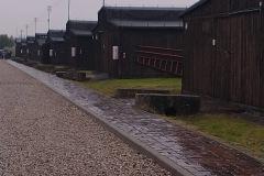 Majdanek-1